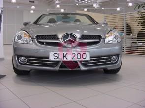 Mercedes-Benz SLK171 Mesh Grill Aston Martin Look (3 pieces) 2008-2011